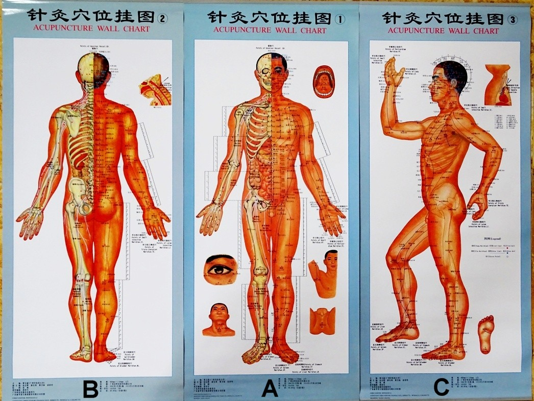 Susan Cromwell on Acupuncture Points in Taijiquan and Qigong ...